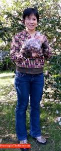Fresh walnuts from Mt Tomah